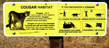 Cougar Habitat