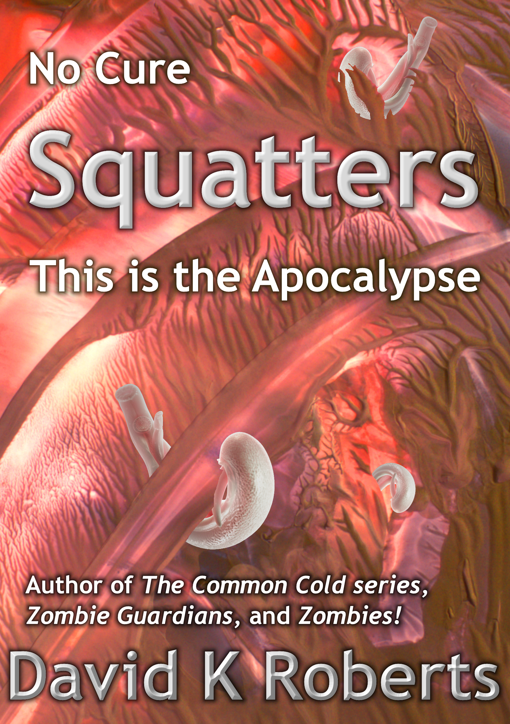 squatters horror zombie zombies apocalypse armageddon scifi sci-fi science fiction david k roberts