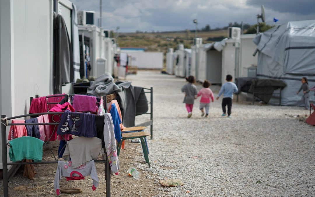 The digital only status and effects on Roma and the status of child refugees raised in Parliament during the Committee Stage of the Immigration Bill