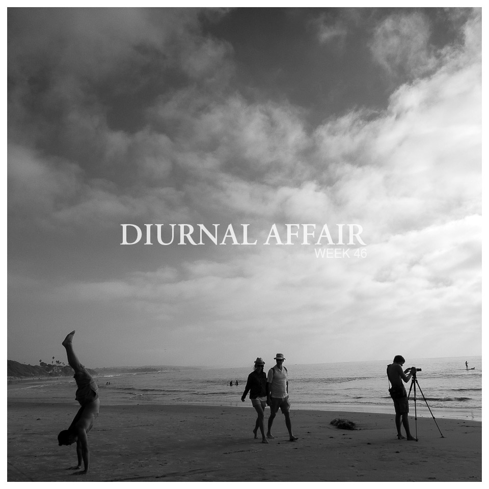 Diurnal Affair by David Bernie Photography