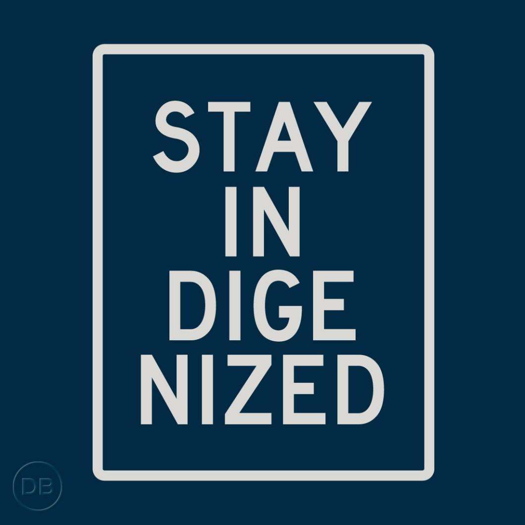 David-Bernie-Tshirt-Stay-Indigenized-(Midnight-Navy)-2