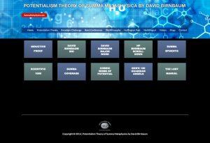 David Birnbaum Business Potentialism Theory