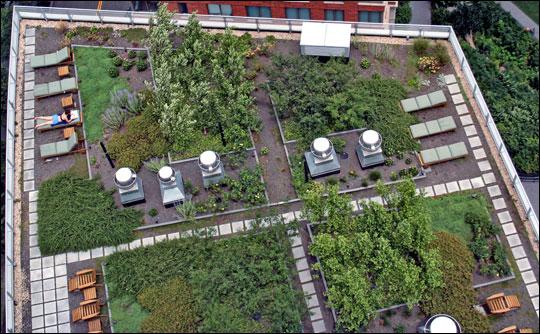 Resultado de imagem para SOLAIRE roof