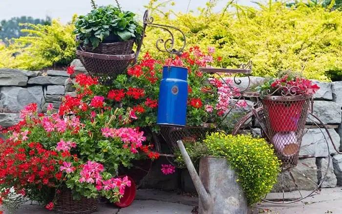 Unusual Garden Containers