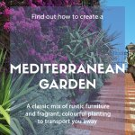 Ideas For Designing A Mediterranean Garden David Domoney
