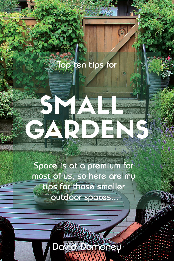 Top 10 tips for small garden design to transform your space on Landscape Garden Designs For Small Gardens id=70112