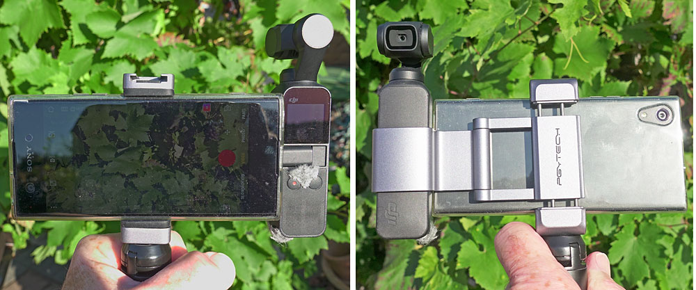 Osmo Pocket PGYTECH phone holder