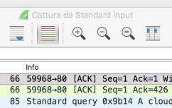 wireshark-standard-input