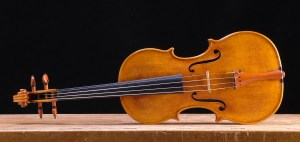 Violin front by David Finck