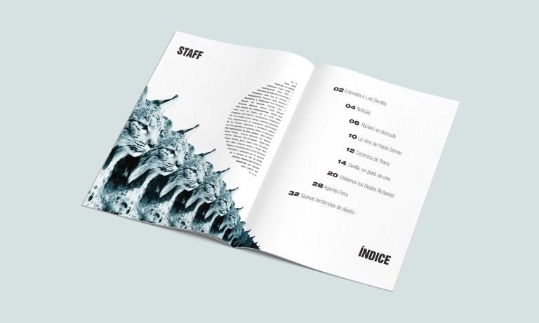 Editorial Design - David Guillén Photography