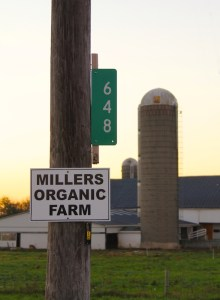 millers-sign-img_7105-copy