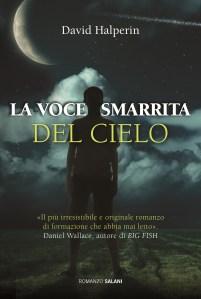 La Voce Smarrita del Cielo - Journal of a UFO Investigator in Italian