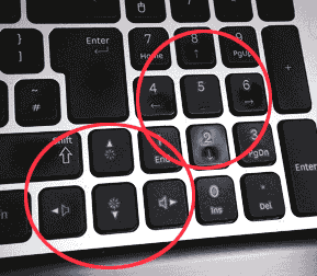Cursor Direction Keys
