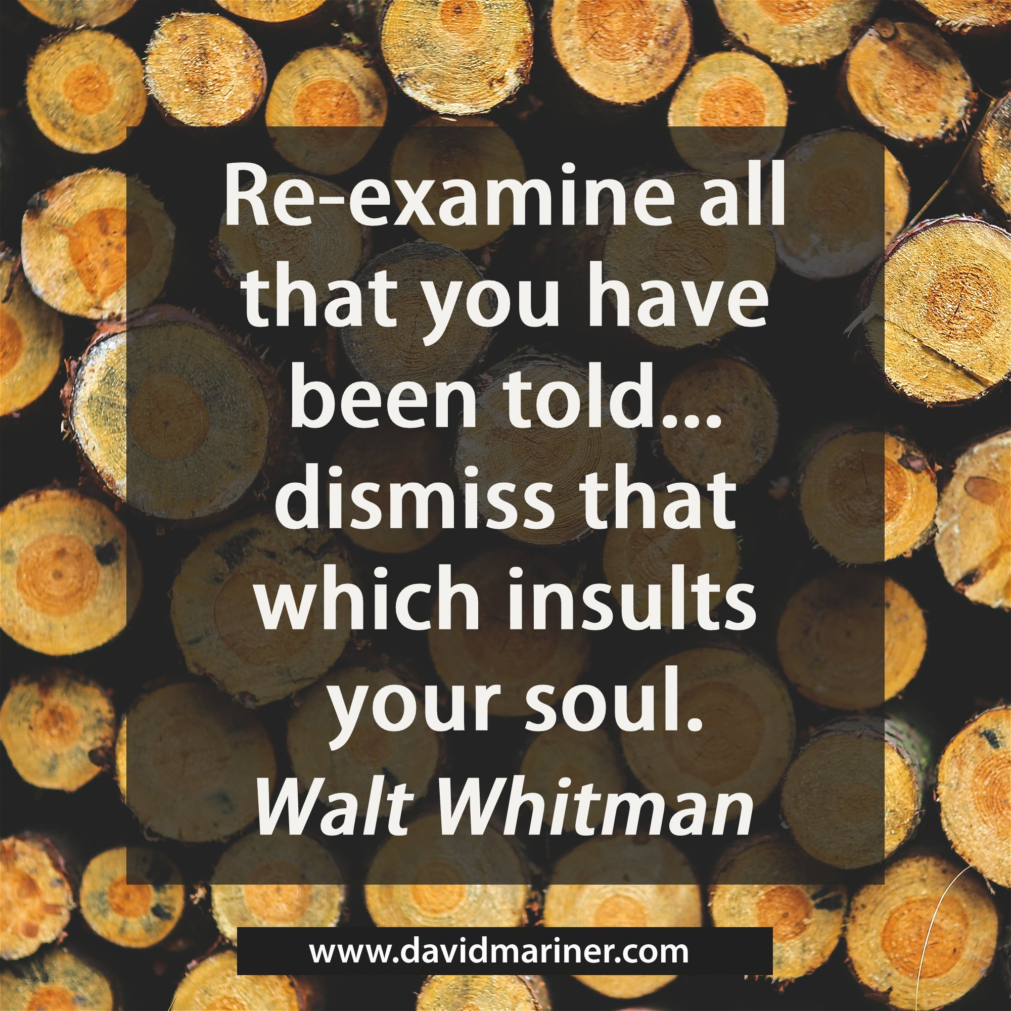 Re-examine all that you have been told...dismiss that which insults your soul. - Walt Whitman