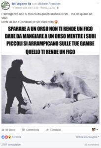 foto-orso-polare-vegano