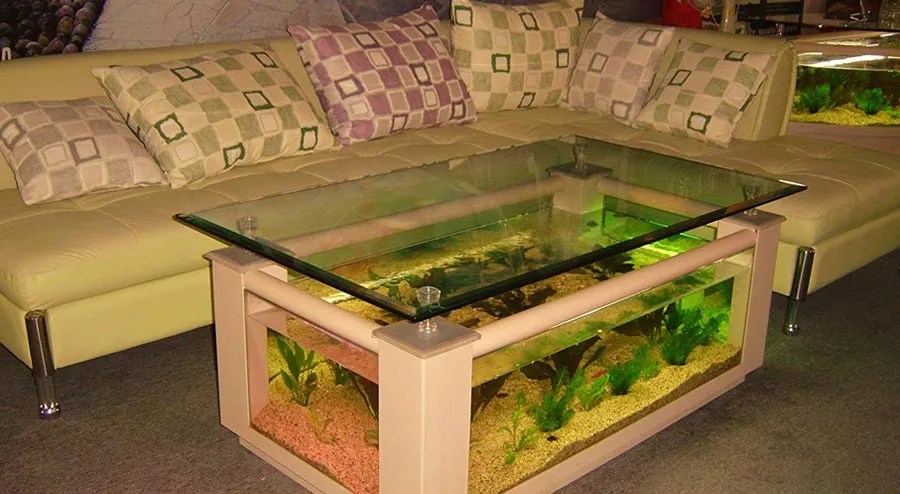 best fish tank coffee table reviews