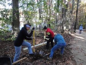 Lake Davidson Access Volunteers on Trail