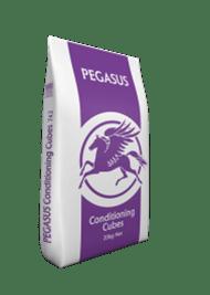 PEGASUS CONDITIONING CUBES 20KG -0