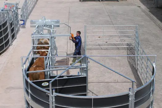 IAE PORTABLE ROTEX CATTLE HANDLING SYSTEM-6993