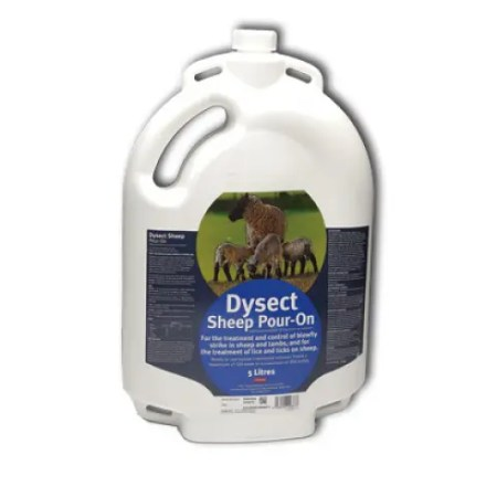 DYSECT SHEEP POUR ON 5L-0