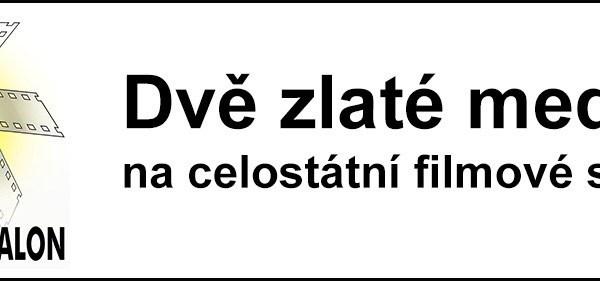Český videosalon 2017