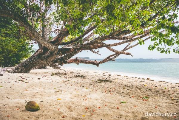 Seyschelles island