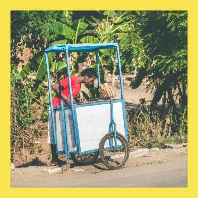 Madagascar_NikonD600_0140_20161006_polaroid