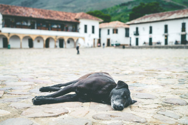 Colombia Villa de Leyva David Surý