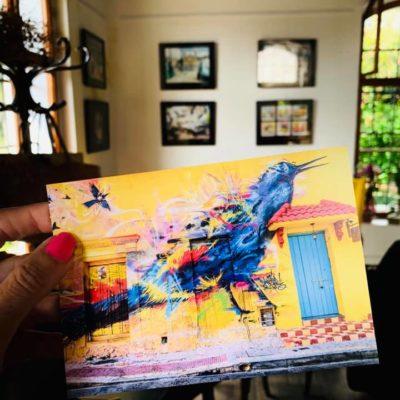 Fér kafe výstava Kolumbie David Surý Foto: Reny Muzik