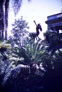 Huntington Library and Art Gallery - Grounds