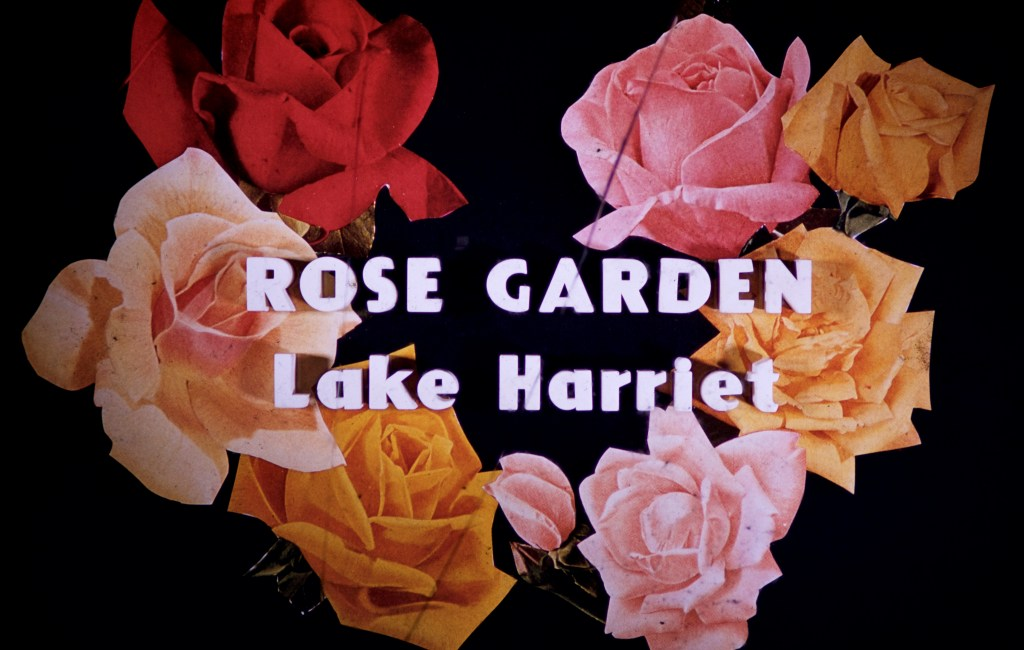 Lake Harriet Rose Garden