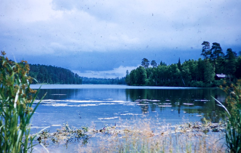 Minnesota – Lake Itasca