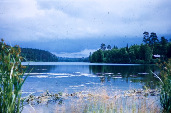 Minnesota - Lake Itasca