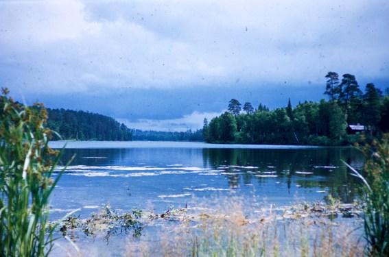 Minnesota - Lake Itasca