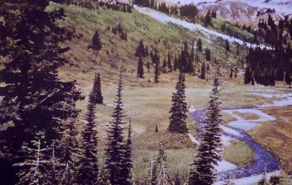 Mount Rainier – Paradise Valley