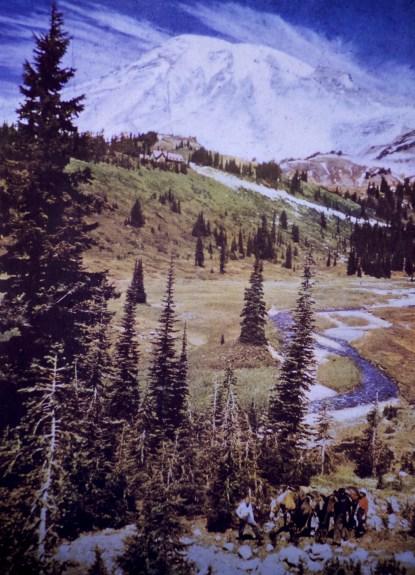 Mount Rainier - Paradise Valley