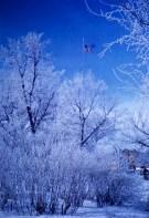 Winter - Old Glory