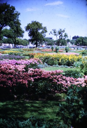 Municipal Gardens, Minneapolis, MN