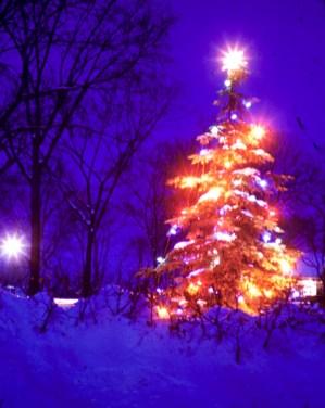 Christmas - The Tree