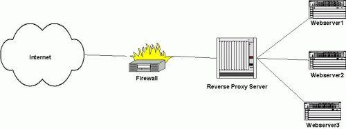 reverse proxy | David Westerfield