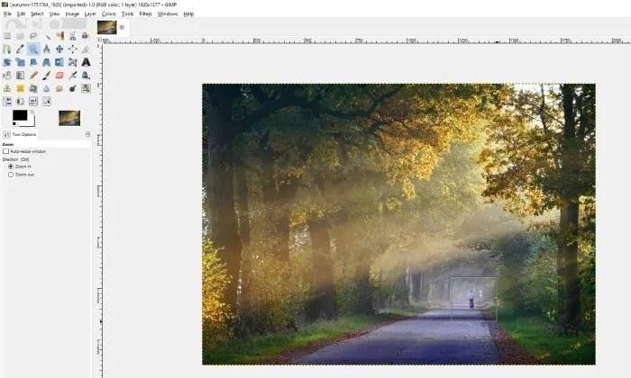 Using Zoom Tool GIMP