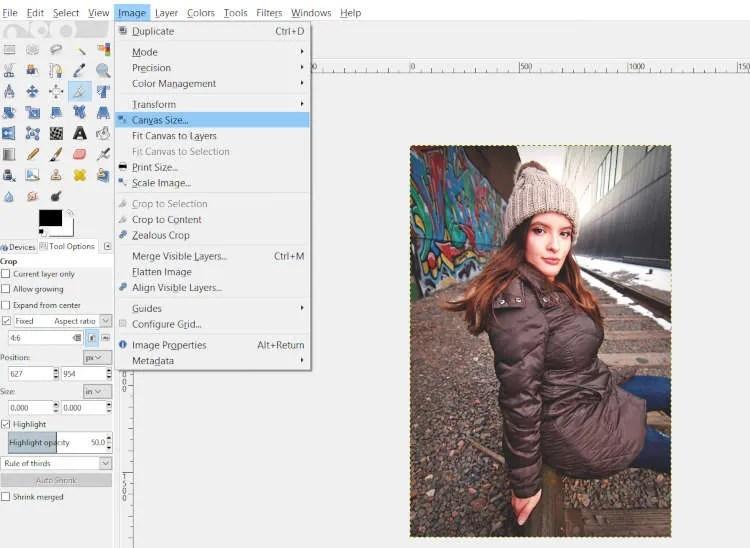 Image Canvas Size GIMP White Border Tutorial