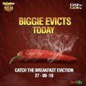 Breaking News: Two 'Pepper Dem' housemates will be evicted today