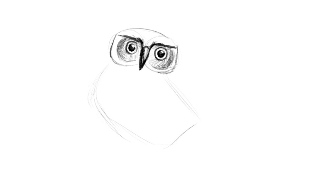 Easy owl drawing lesson