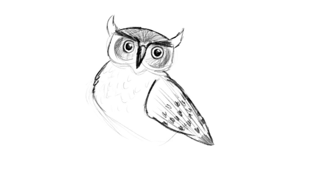 Instructional video lesson owl drawing tutorial