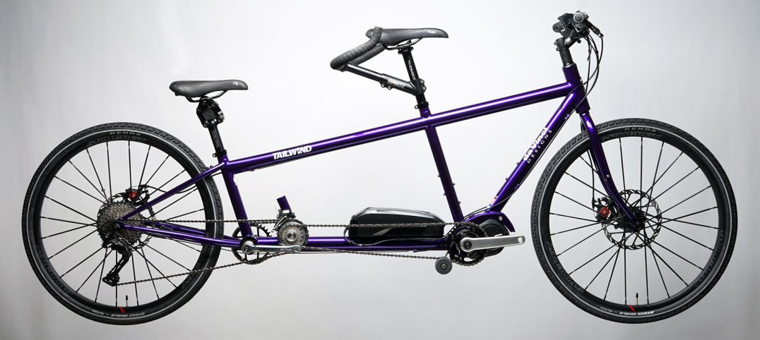 Deep Purple Custom X-Small Tailwind Electric Assist Mountain tandem