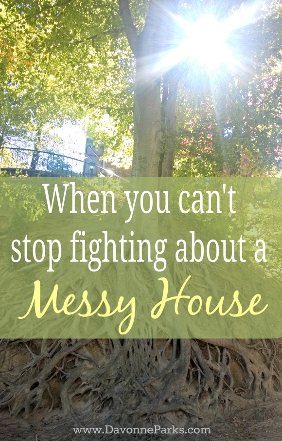 MessyHouseFights