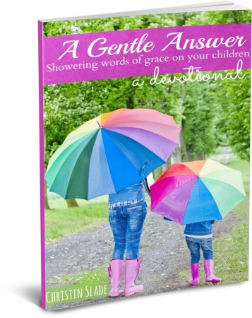 A Gentle Answer 3D