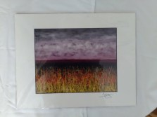 Stormy landscape print by Dan Lager