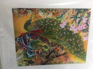 Peacock print by Bryan Yung